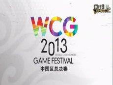 三星WCG2013中国区总决赛 星际争霸2 iG.jim  vs iG.macsed 3
