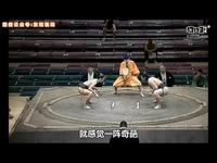 3分钟秒懂小日本《刀剑乱舞》奇葩回合制手游