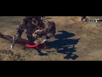 《寻龙记2》职业宣传片