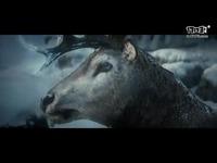 God of War – Full TV Commercial - PS4