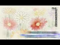 《战场女武神 4》中文宣传视频