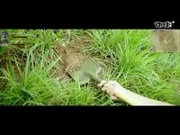 《古剑奇谭网络版》公测沙雕视频之寻宝篇